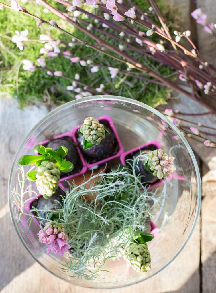 Frühlingsblumen DIY - Dekoriere in Glasvasen hübsche Hyazinthen